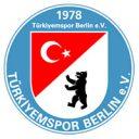 Logo des Basketballvereins Türkiyemspor Berlin